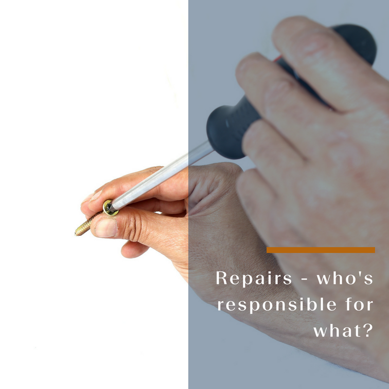 Repairs & Maintenance – Who's Responsible for what?